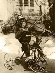 猿とバイオリン