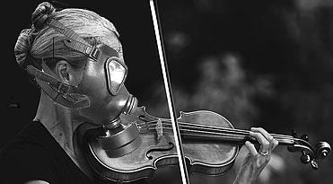 smell violin